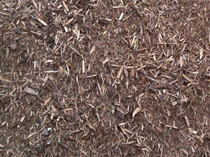 Red-Pine-Mulch